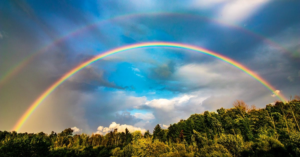 An image of a forest with two rainbows in a partially cloudy blue sky.