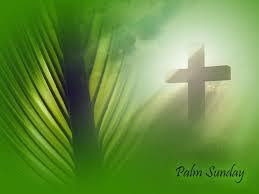 Image of a green palm on the left with a cross engulfed in a bright light on the right.