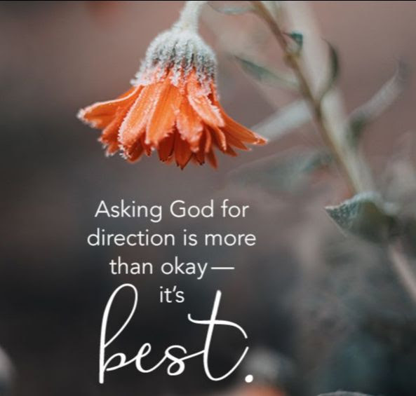 """The image is of a photo of an orange flower barely open and leaning over. Directly below is the text """"Asking God for direction is more than okay - it's Best"""""""